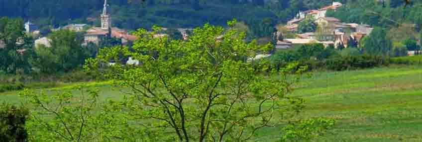 Vins Falguières, Domaine de la Frayssinette