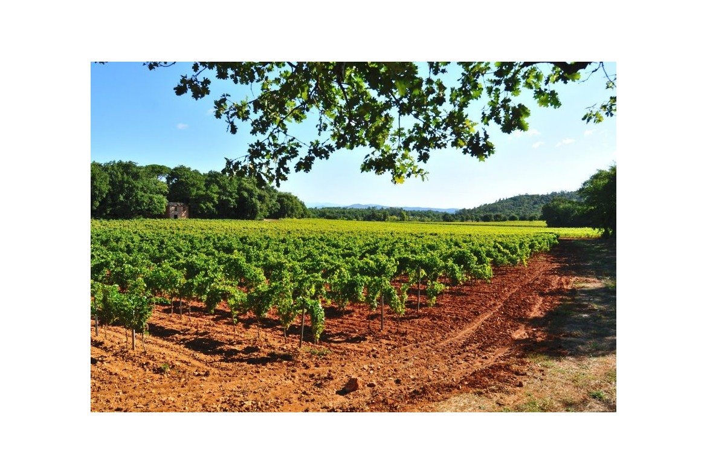 Le domaine de La Rose des Vents, Coteaux Varois